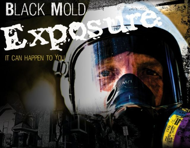 Black Mold Exposure Information