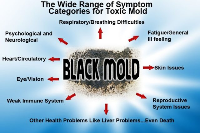 Black Mold In Bathroom Health Hazard toxic black mold symptoms, test, removal & health effects