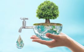 Environmental Law: What Kinds of Claims Can Be Brought?