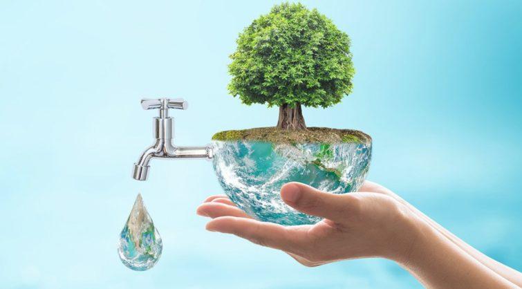 environmental law information