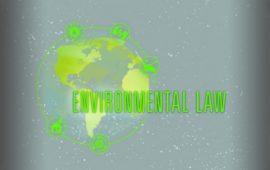 Environmental Lawyer