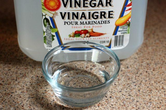 kill mold spores with vinegar