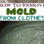 How to Get Mold out of Clothes – Step by Step Guide