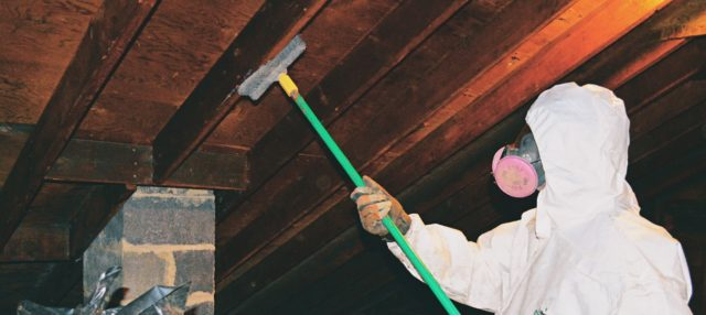How to Remove Mold in Attic Permanently