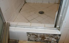 Mold In Shower Make You Sick pink mold facts: its danger and removal solution - clean water