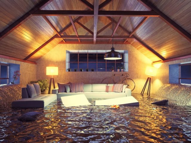 tips to remove water damage mold
