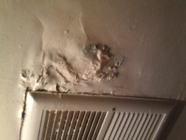 Genial Is It Easy To Remove The Black Mold In Apartment?