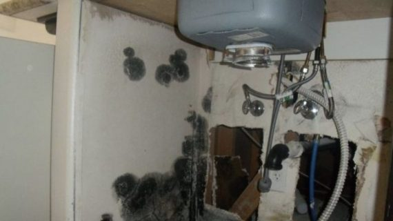 Don't Want Any Mold Under Your Sink? Do These Steps