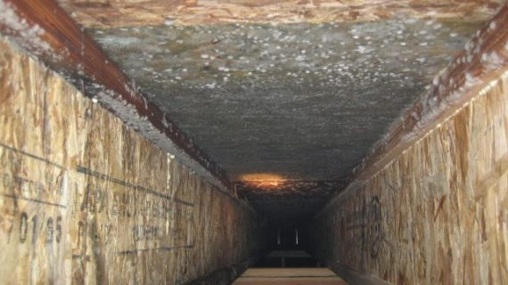 Is It Hard Take Out Mold in Crawl Space?