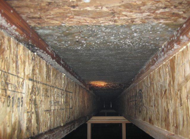 Is It Hard Take Out Mold In Crawl Space Clean Water