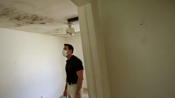The Effects of Breathing in Mold